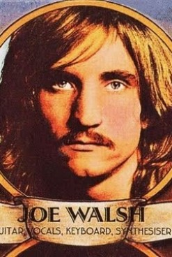 The Rise of Joe Walsh in the 1970s