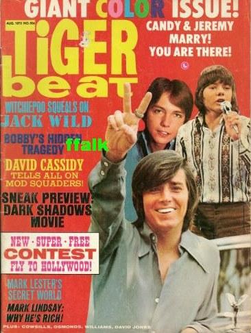 Tiger Beat 1970 Bobby Sherman