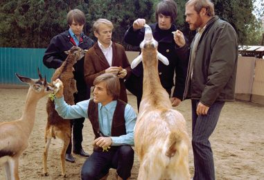 Beach Boys' 'Pet Sounds': Still Awesome at 50+