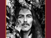 George Harrison Vinyl Collection Box Coming