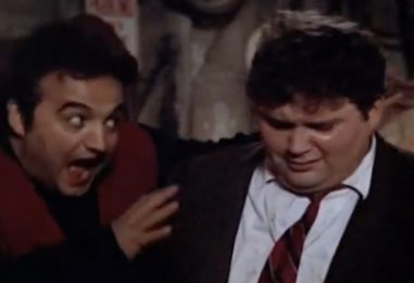 Remembering Animal House's 'Fat, Drunk and Stupid' Flounder