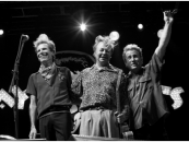 Stray Cats: 40th Anniv. Tour, Album – Listen