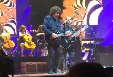 Jeff Lynne, Dhani Harrison Sing Wilburys' Favorite: 2019