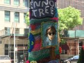 A John Lennon Tree Grows in Manhattan